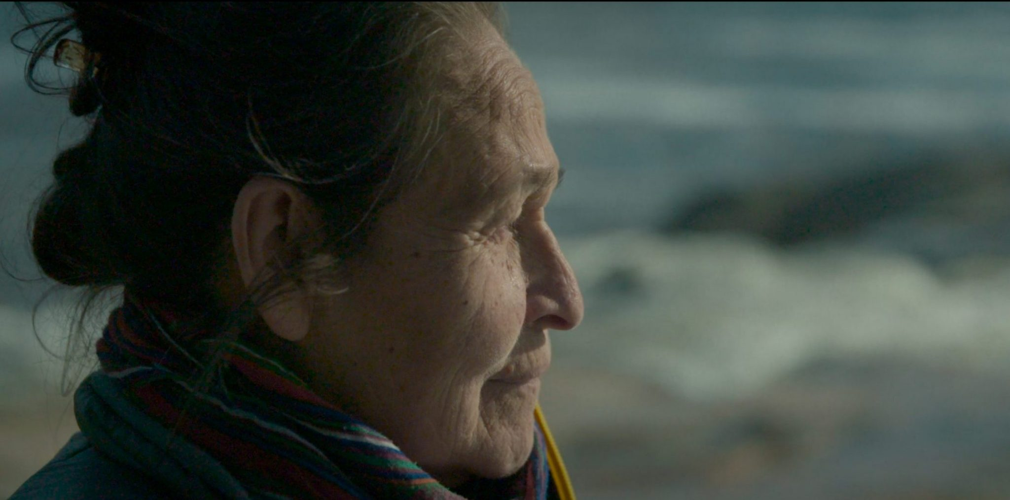 """A still from """"Call Me Human"""". A close up shot of Joséphine, the film's Innu protagonist. She is looking to the right of the frame with a pensive expression, and the corners of her mouth are upturned. She is bundled up in a jacket and a scarf to face the elements of the sea and shore behind her."""