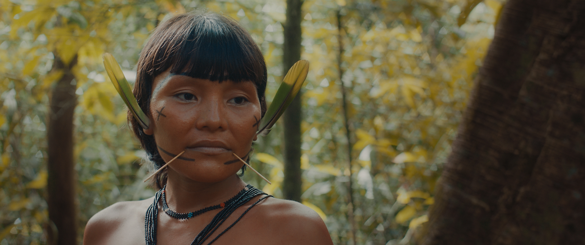 """A still from """"The Last Forest"""". A close up shot of an person looking slightly downwards. They wear a beaded necklace and additional adornments on their face including: a feather worn in each ear, a thin stick that pierce the two sides below their mouth, a black cross and line marking on each cheek and jaw. They are surrounded by a forest of trees with yellow leaves."""