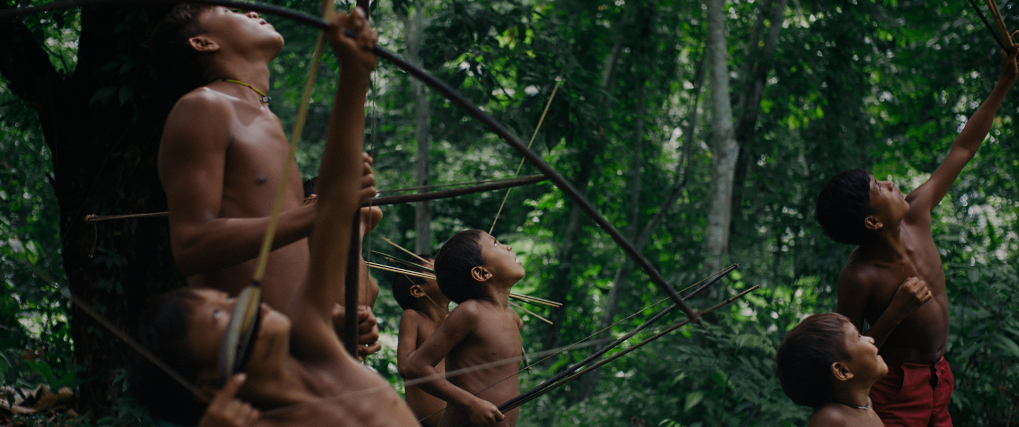 """A still from """"The Last Forest"""". Seven boys ranging from toddler to teenager stand in a forest looking up into the sky. They are all clutching bows and arrows, and two of the boys are aiming their arrows into the sky as one boy points in the same direction. The eldest of the boys stands behind the younger ones."""